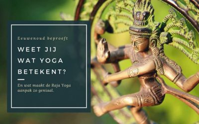 Wat is Yoga en wat verschilt Raja Yoga van alle andere yogavormen?