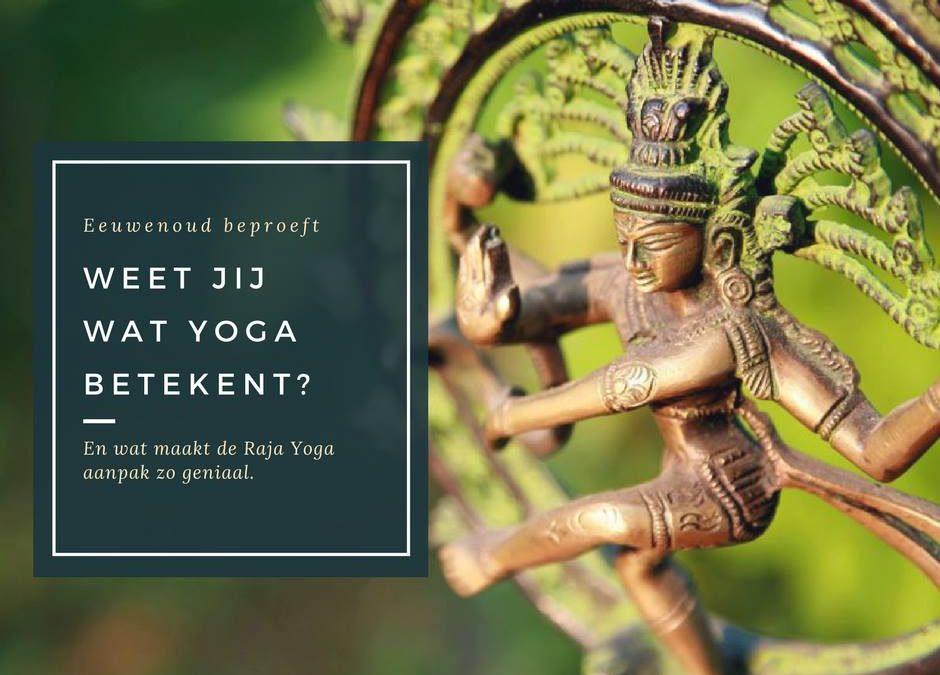 Wat is Yoga en wat verschilt Raja Yoga van al het andere?