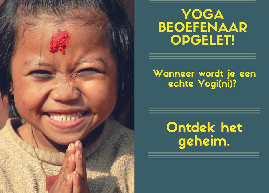 Wat is een Yogi(ni)? Ontwikkel jezelf en wordt er één met Raja Yoga.